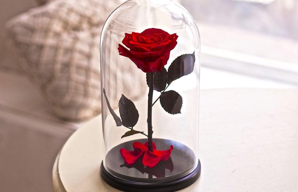 Картинка розы в колбе