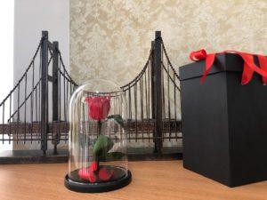 rosa-v-kolbe-korobka